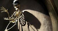 Corpse Bride -  Hochzeit mit einer Leiche - Produktdetailbild 3