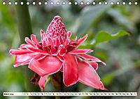 Costa Rica - Farben des Regenwaldes (Tischkalender 2019 DIN A5 quer) - Produktdetailbild 3