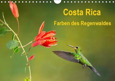 Costa Rica - Farben des Regenwaldes (Wandkalender 2019 DIN A4 quer), k.A. Akrema-Photography