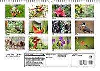 Costa Rica - Farben des Regenwaldes (Wandkalender 2019 DIN A3 quer) - Produktdetailbild 13