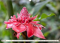 Costa Rica - Farben des Regenwaldes (Wandkalender 2019 DIN A3 quer) - Produktdetailbild 3