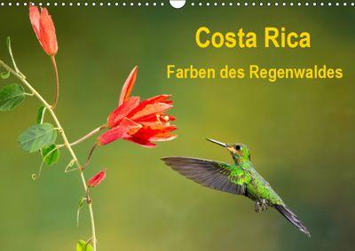 Costa Rica - Farben des Regenwaldes (Wandkalender 2019 DIN A3 quer), Akrema-Photography