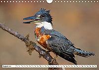 Costa Rica - Farben des Regenwaldes (Wandkalender 2019 DIN A4 quer) - Produktdetailbild 8