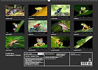 Costa Rica - Faszination Frösche (Wandkalender 2019 DIN A2 quer) - Produktdetailbild 13