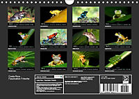 Costa Rica - Faszination Frösche (Wandkalender 2019 DIN A4 quer) - Produktdetailbild 13