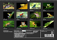 Costa Rica - Faszination Frösche (Wandkalender 2019 DIN A3 quer) - Produktdetailbild 13