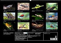 Costa Rica - Reptilien und Amphibien (Wandkalender 2019 DIN A2 quer) - Produktdetailbild 13