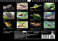 Costa Rica - Reptilien und Amphibien (Wandkalender 2019 DIN A4 quer) - Produktdetailbild 13