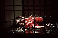 Criminal Instinct - Liebe bis in den Tod - Produktdetailbild 2