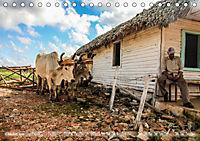 Cuba - Lebendiges Museum (Tischkalender 2019 DIN A5 quer) - Produktdetailbild 10
