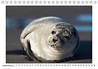 Dänemark - Phototravellers Sehnsuchtskalender (Tischkalender 2019 DIN A5 quer) - Produktdetailbild 9