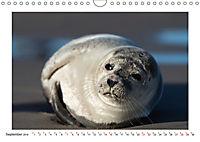 Dänemark - Phototravellers Sehnsuchtskalender (Wandkalender 2019 DIN A4 quer) - Produktdetailbild 9