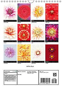 dahlia days (Wall Calendar 2019 DIN A4 Portrait) - Produktdetailbild 13