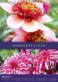 Dahlien - Der Sommer im Garten (Tischkalender 2019 DIN A5 hoch) - Produktdetailbild 1
