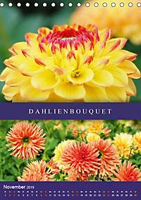 Dahlien - Der Sommer im Garten (Tischkalender 2019 DIN A5 hoch) - Produktdetailbild 11