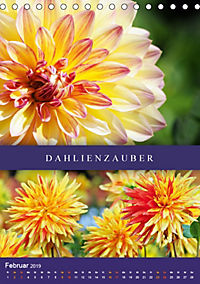 Dahlien - Der Sommer im Garten (Tischkalender 2019 DIN A5 hoch) - Produktdetailbild 2