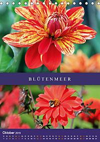 Dahlien - Der Sommer im Garten (Tischkalender 2019 DIN A5 hoch) - Produktdetailbild 10