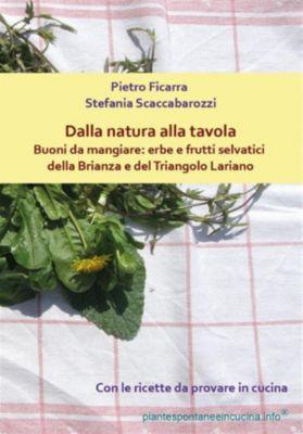 Dalla natura alla tavola. Buoni da mangiare: erbe e frutti selvatici della Brianza e del Triangolo Lariano, Stefania Scaccabarozzi