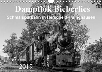 Dampflok Bieberlies in Herscheid-Hüinghausen (Wandkalender 2019 DIN A4 quer), Simone Rein