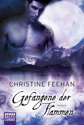 Dark Carpathians Band 23: Gefangene der Flammen, Christine Feehan