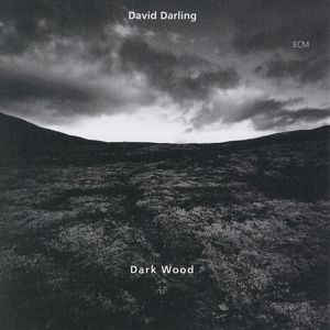 Dark Wood, David Darling