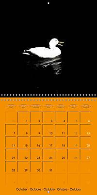 Darkness and Hope (Wall Calendar 2019 300 × 300 mm Square) - Produktdetailbild 10