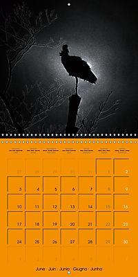 Darkness and Hope (Wall Calendar 2019 300 × 300 mm Square) - Produktdetailbild 6