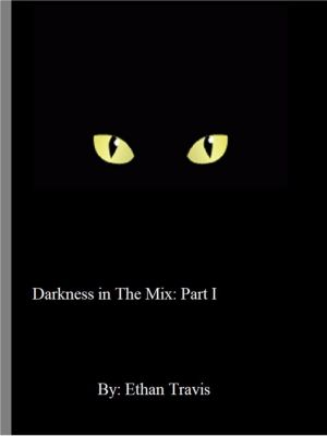 Darkness in The Mix: Part I, Ethan Travis
