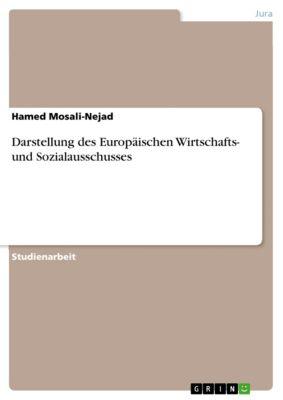 Darstellung des Europäischen Wirtschafts- und Sozialausschusses, Hamed Mosali-Nejad