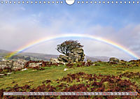 Dartmoor, herbe Schönheit im Süden Englands (Wandkalender 2019 DIN A4 quer) - Produktdetailbild 6