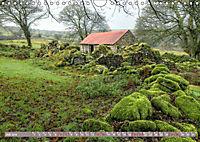 Dartmoor, herbe Schönheit im Süden Englands (Wandkalender 2019 DIN A4 quer) - Produktdetailbild 7