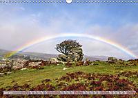 Dartmoor, herbe Schönheit im Süden Englands (Wandkalender 2019 DIN A3 quer) - Produktdetailbild 6