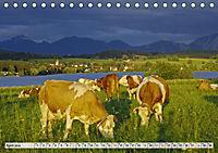 Das Blaue Land - Himmel, Seen und Berge im bayerischen Voralpenland (Tischkalender 2019 DIN A5 quer) - Produktdetailbild 4