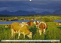 Das Blaue Land - Himmel, Seen und Berge im bayerischen Voralpenland (Wandkalender 2019 DIN A2 quer) - Produktdetailbild 4