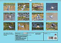 Das blaue Wunder - Moorfrösche in ihrem Habitat (Wandkalender 2019 DIN A3 quer) - Produktdetailbild 13