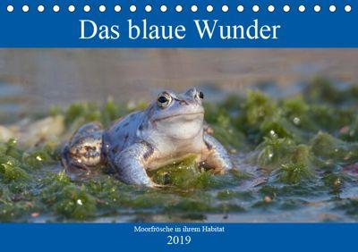 Das blaue Wunder - Moorfrösche in ihrem Habitat (Tischkalender 2019 DIN A5 quer), Sabine Grahneis