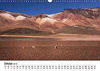 Das bolivianische Hochland (Wandkalender 2019 DIN A3 quer) - Produktdetailbild 10