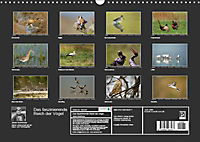 Das faszinierende Reich der Vögel (Wandkalender 2019 DIN A3 quer) - Produktdetailbild 13