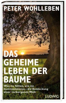 [Bild: das-geheime-leben-der-baeume-124301160.j...st-xl$]