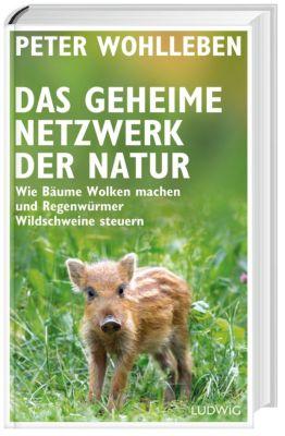 Das geheime Netzwerk der Natur - Peter Wohlleben |