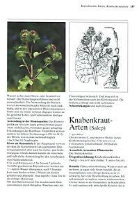 Das große Buch der Heilpflanzen - Produktdetailbild 6