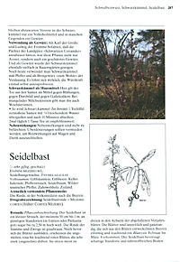 Das große Buch der Heilpflanzen - Produktdetailbild 9
