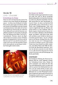 Das grosse Buch zur Schwangerschaft - Produktdetailbild 14