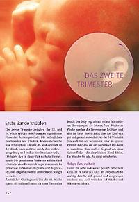 Das grosse Buch zur Schwangerschaft - Produktdetailbild 10