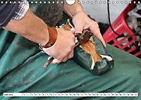 Das Handwerk der Schuhmacher (Wandkalender 2019 DIN A4 quer) - Produktdetailbild 1