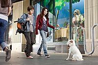 Das Hundehotel - Produktdetailbild 7