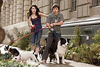 Das Hundehotel - Produktdetailbild 4