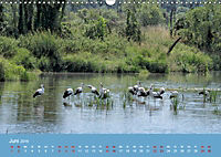 Das Jahr an der Naab zwischen Burglengenfeld und Kallmünz (Wandkalender 2019 DIN A3 quer) - Produktdetailbild 6