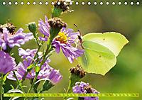 Das Jahr im Garten: Freude am Landleben (Tischkalender 2019 DIN A5 quer) - Produktdetailbild 3