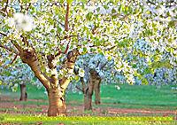 Das Jahr im Garten: Freude am Landleben (Tischkalender 2019 DIN A5 quer) - Produktdetailbild 2